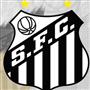 SANTOS FUTEBOL CLUBE - SUB13