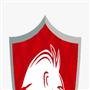 SELEÇÃO PARNAMIRIM FC